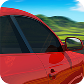 Polarizado de Automovil